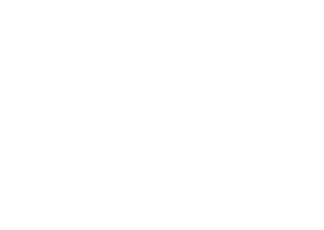 guitares talon-luthier entre chartres 28000 et Rambouillet 78000